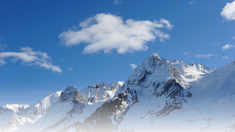 ski alpine live